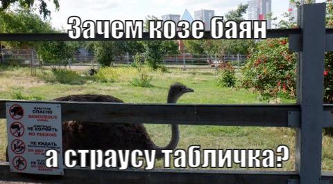 my-awesome-meme (5).jpeg