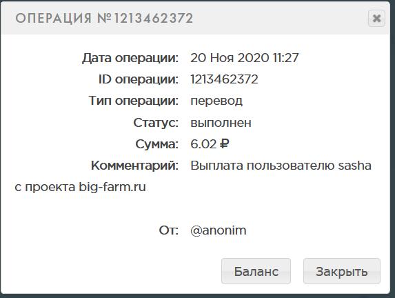 Screenshot_2020-11-20 PAYEER История.png