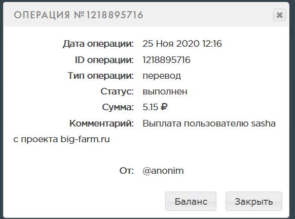 Screenshot_2020-11-25 PAYEER История.png