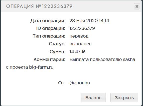 Screenshot_2020-11-28 PAYEER История.png