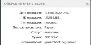 Screenshot_2020-11-19 PAYEER История.png