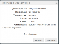 Screenshot_2020-12-01 PAYEER История.png