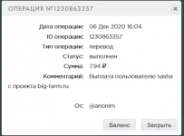 Screenshot_2020-12-06 PAYEER История.png